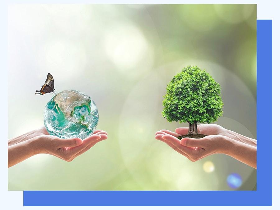 Démarches et produits écologiques utilisés par Alternative 4D
