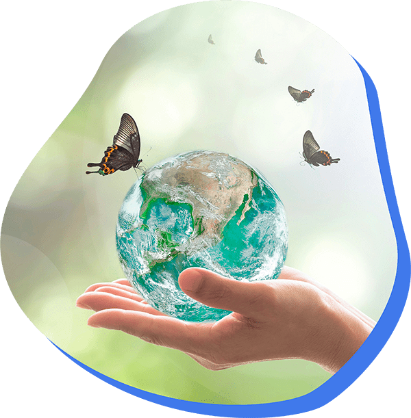 Alternative 4D respecte l'environnement et adopte des solutions saines